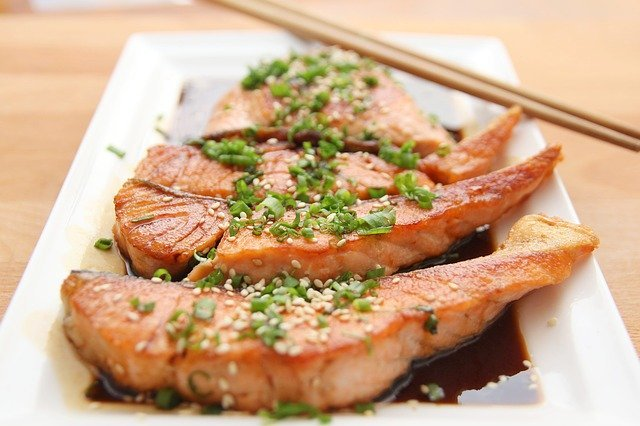 Carnivore Diet Plan - Carnivore definition